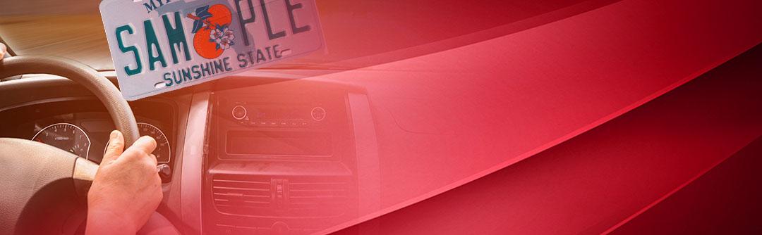 Vehicle Tag & Registration